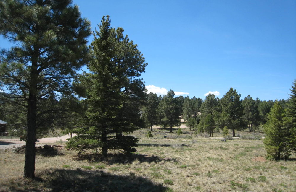 12 Armijo Circle, Angel Fire, NM 87710 MLS 93551