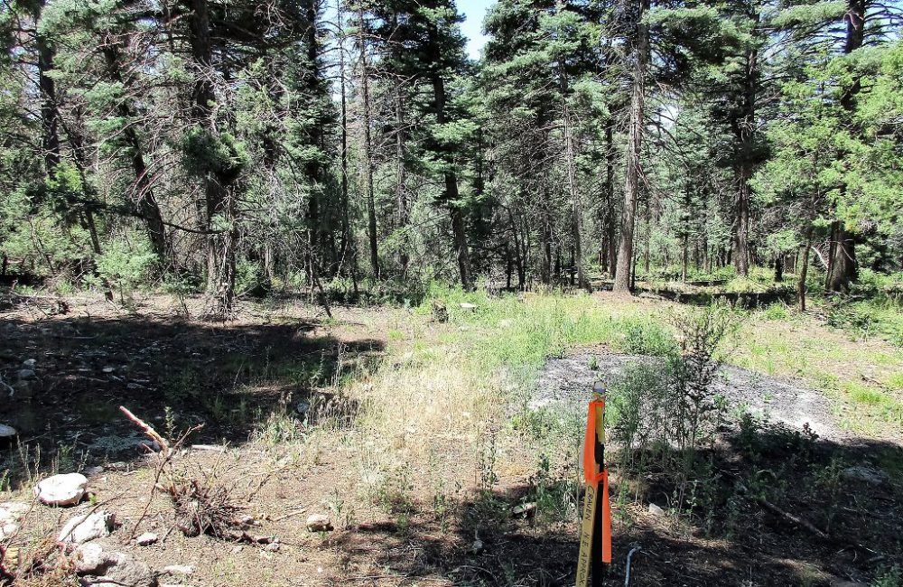 Parcel A El Salto Road, Taos, NM 87571