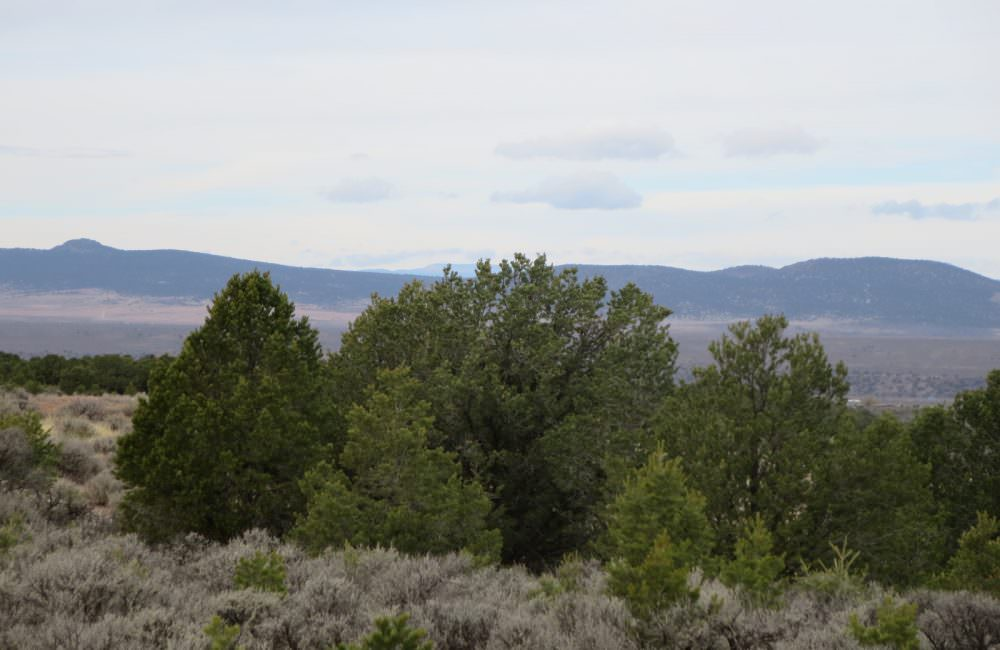 Lot 23 Sandia Canyon, Taos NM 87571