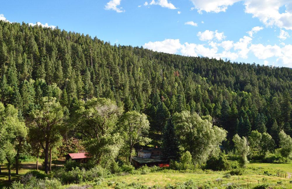 26287 E US Highway 64, Taos NM 87571