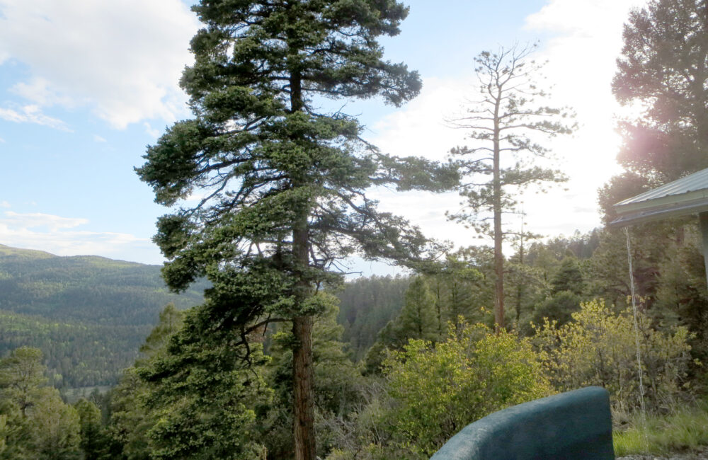 102 Verada de Los Angeles Taos, New Mexico 87571